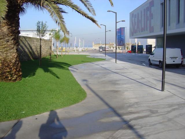 Rua Particular do Castelo do Queijo (5)